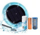 No More Green Technologies Original Solar Pool Ionizer
