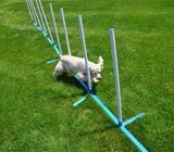 Cool Runners Dog Agility Weave Poles
